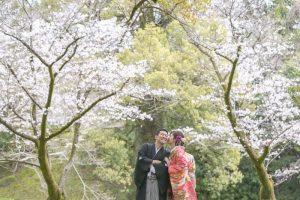 桜の中でフォト婚前撮り